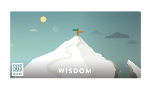 Wisdom Infographic, an SOS Outreach value